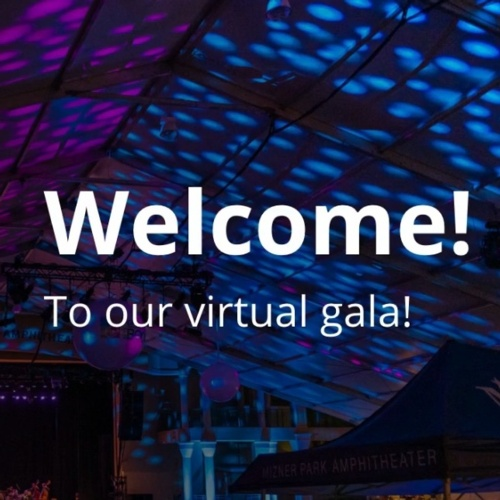 15th Anniversary Virtual Gala